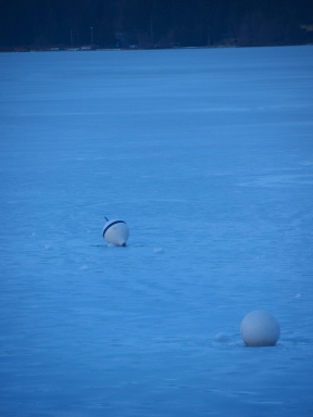 Whistler, January 2014